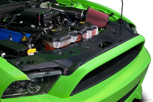 13-14 Ford Mustang Abdeckung Kühlerträger - Cervinis - Carbon