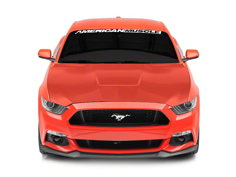 15 17 ford mustang motorhaube gt350 style aluminium. Black Bedroom Furniture Sets. Home Design Ideas