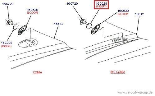 96-98 Grill Einsatz bei Cobra Motorhaube links