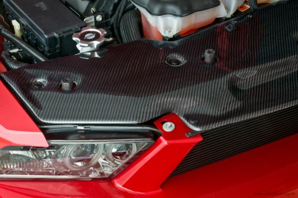 10-12 Ford Mustang Abdeckung Kühlerträger - Cervinis - Carbon