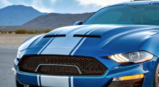 18-20 Ford Mustang (2.3/5.0) Kühlergrill - Shelby Super Snake - Oben