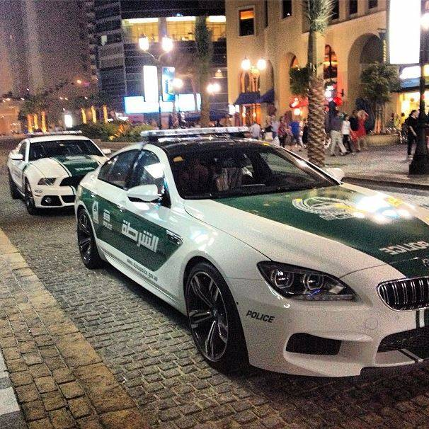 Car Parts Export In Dubai Mail: Dubai's Polizei Setzt Auf Roush Mustangs